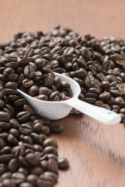 Roasted Coffee beans with scoop — Stock Photo