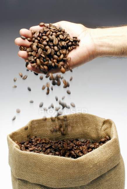 Coffee beans falling from male hand — Stock Photo