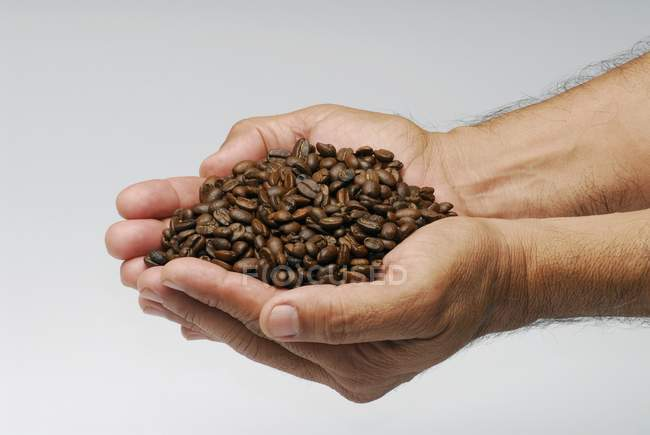 Male hands holding coffee beans — Stock Photo