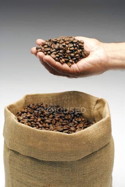 Hombre mano sosteniendo granos de café - foto de stock