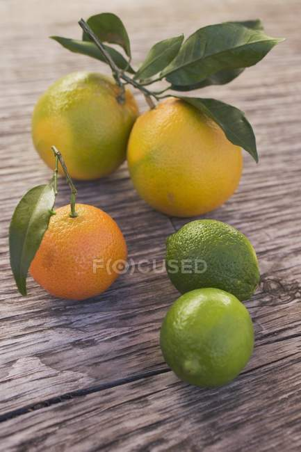 Fresh citrus fruits — Stock Photo