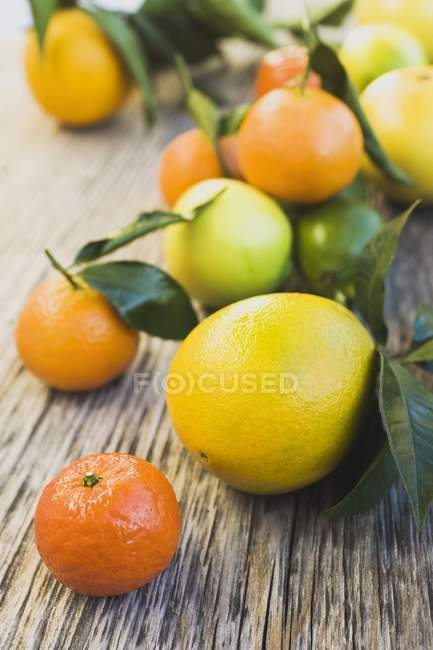 Fresh assorted citrus fruits — Stock Photo