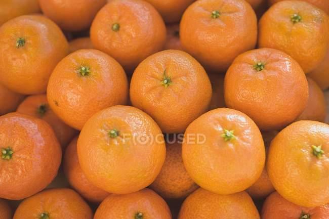 Clémentines mûres fraîches — Photo de stock
