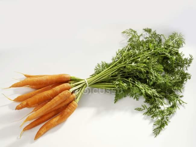 Manojo de zanahorias con tallos - foto de stock