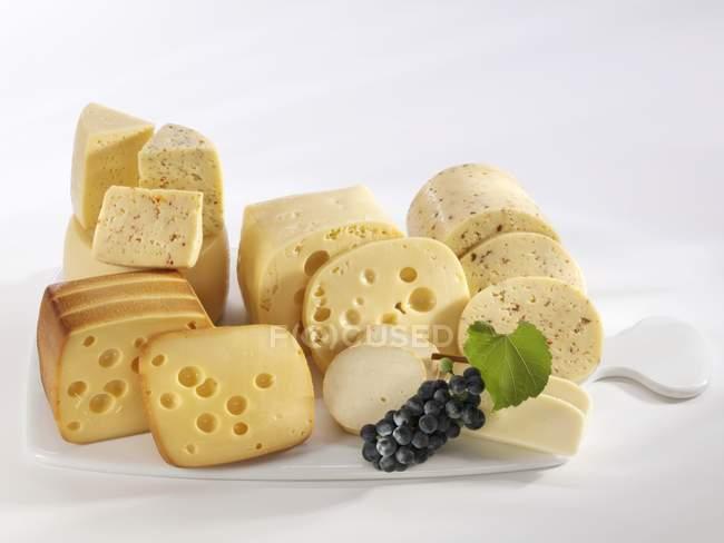 Planches de fromages mixtes — Photo de stock