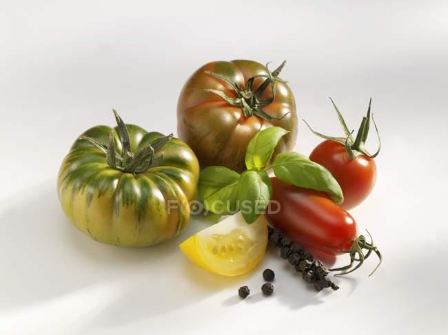 Помидоров с базиликом и кучу перца — стоковое фото