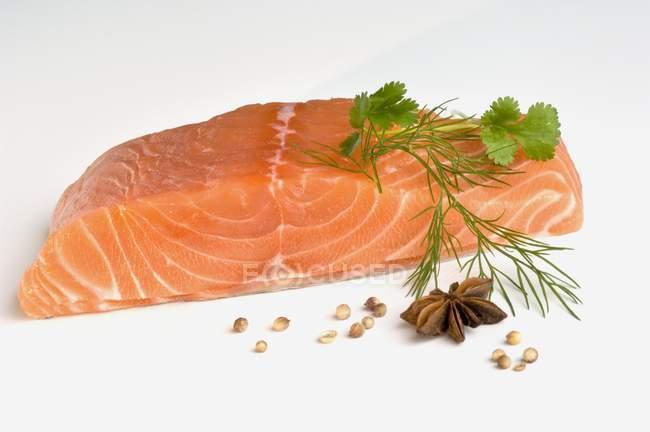 Свіжі Філе лосося — стокове фото