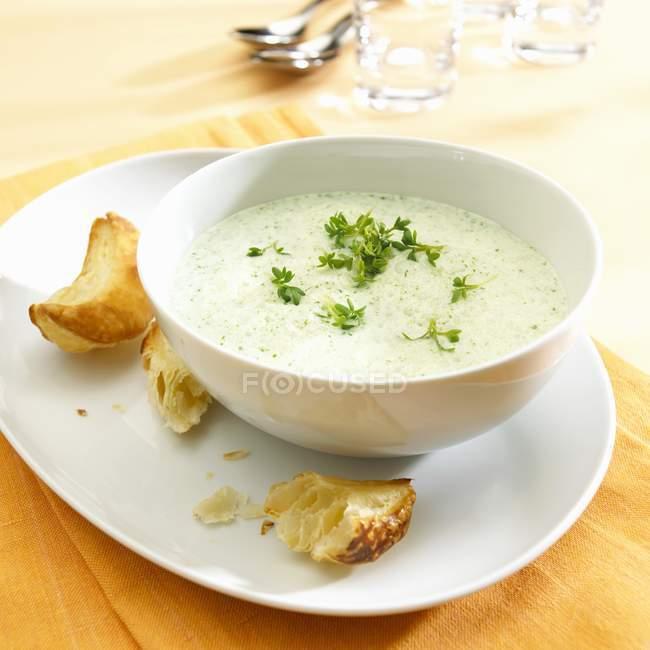 Kressesuppe in weißer Schüssel — Stockfoto