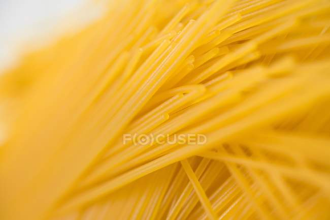 Bundle of dried Spaghetti — Stock Photo