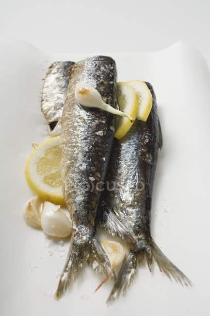 Маринованные сардины с чесноком и лимоном — стоковое фото