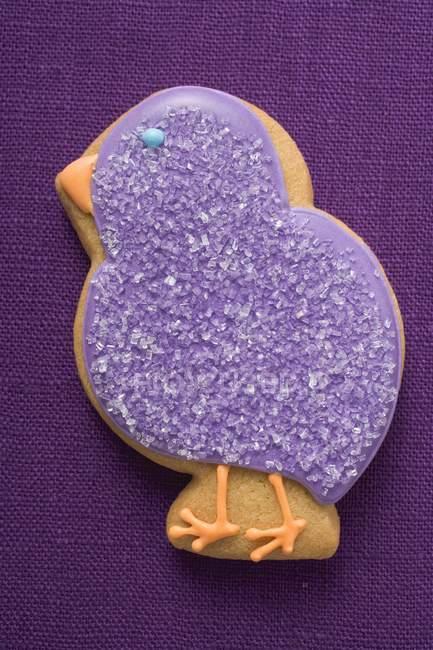 Biscoito em forma de pintinho roxo — Fotografia de Stock