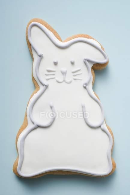 Печенье в форме Пасхальный кролик — стоковое фото
