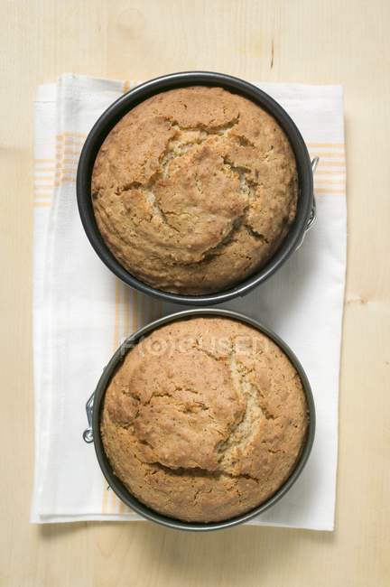 Dos pasteles recién horneados - foto de stock