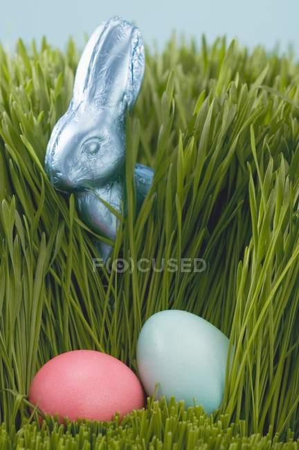 Пасхальный заяц в траве — стоковое фото