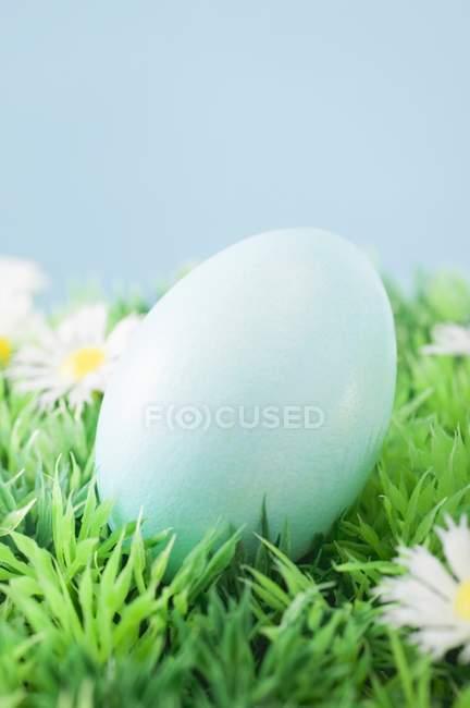 Closeup vista de ovo de Páscoa colorida azul na grama com margaridas — Fotografia de Stock