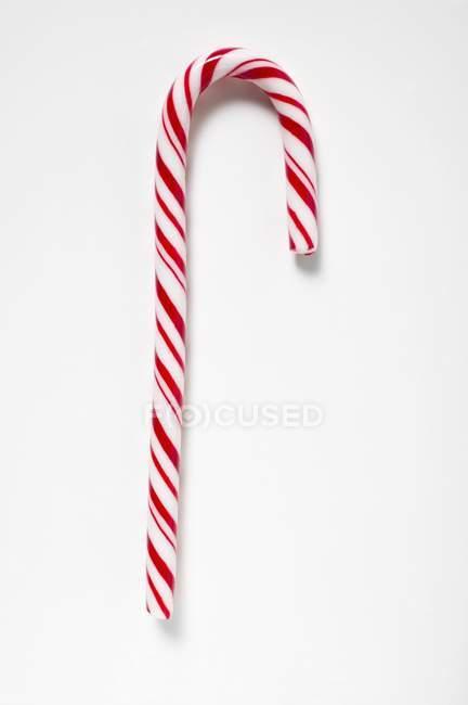 Canne à sucre sur blanc — Photo de stock