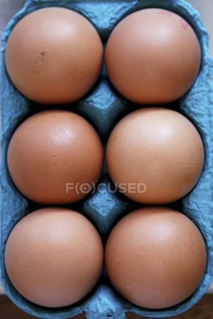 Яйца куриные в картонной коробке — стоковое фото