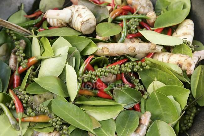 Varias especias y hojas de laurel en un recipiente - foto de stock