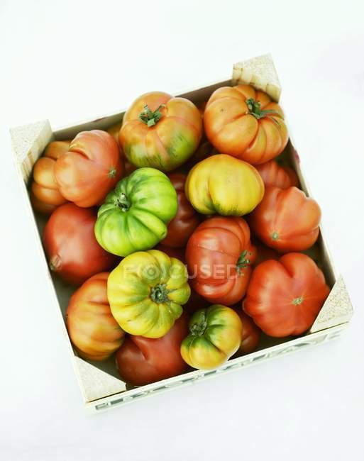 Beefsteak tomates en caja de madera - foto de stock
