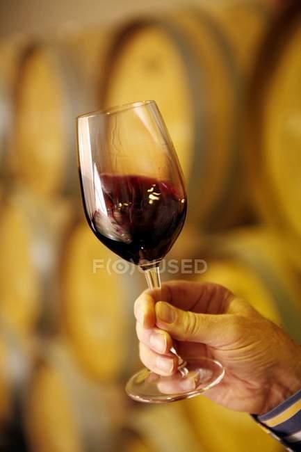 Wirbelnden Rotwein — Stockfoto