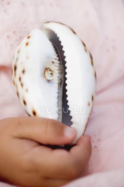 Primo piano ritagliata vista della mano del bambino di conchiglia ciprea — Foto stock