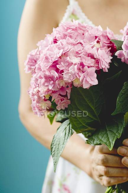 Femme tenant le bouquet d'Hortensias pourpres — Photo de stock