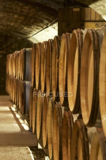 Botti di legno in fila in cantina — Foto stock