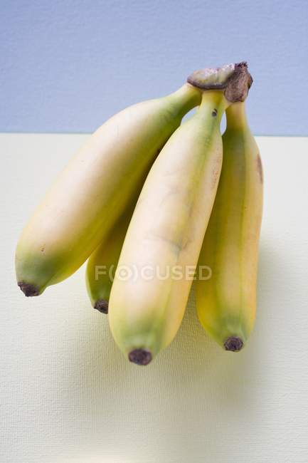 Bunch of fresh Plantains — Stock Photo