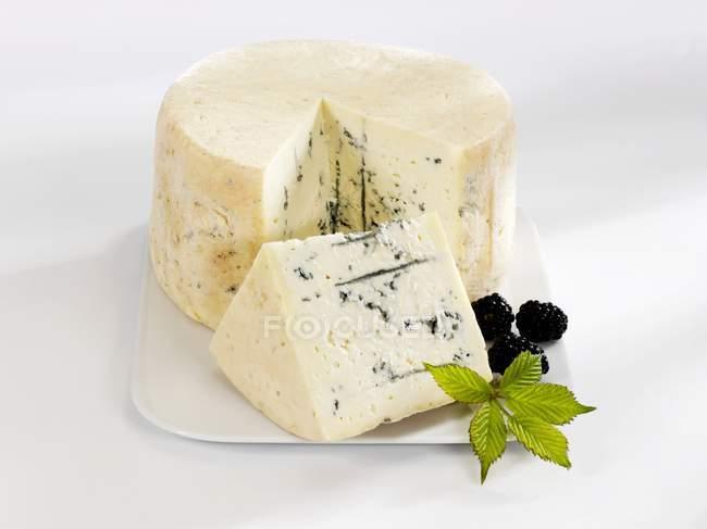 Fromage bleu avec un morceau coupé — Photo de stock
