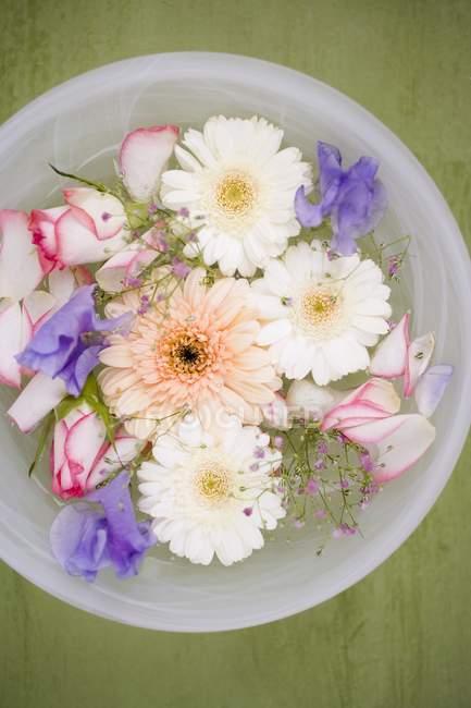 Вид зверху змішаних квітів у миску води — стокове фото