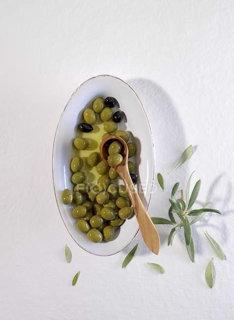 Schüssel mit gemischten Oliven — Stockfoto