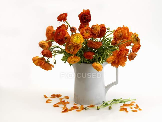 Still life with buttercups in a vase on a white surface — Stock Photo