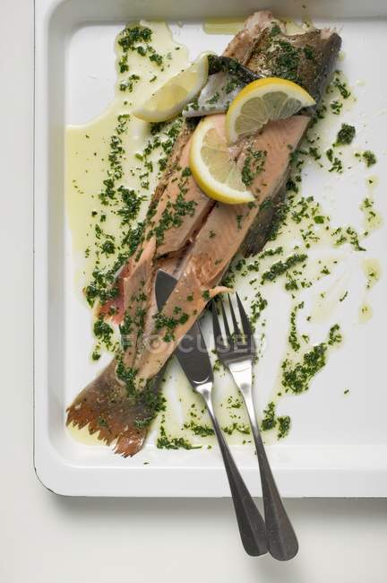 Fresh Salmon trout with herb butter — Stock Photo