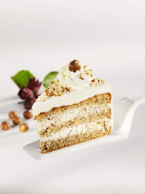 Кусок торта гайка — стоковое фото