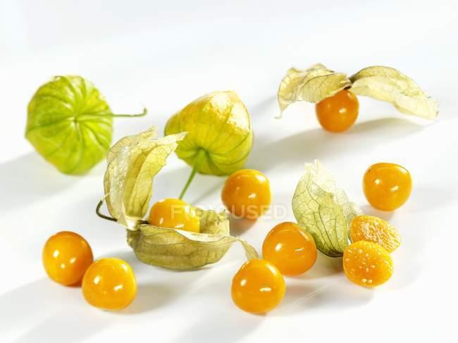 Fresh and ripe cape gooseberries — Stock Photo
