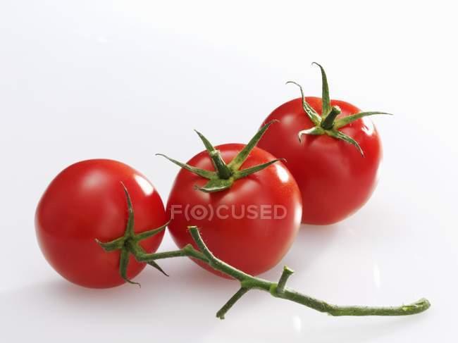 Three red tomatoes — Stock Photo