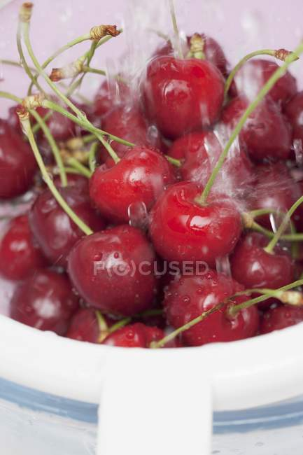 Sweet cherries washed — Stock Photo