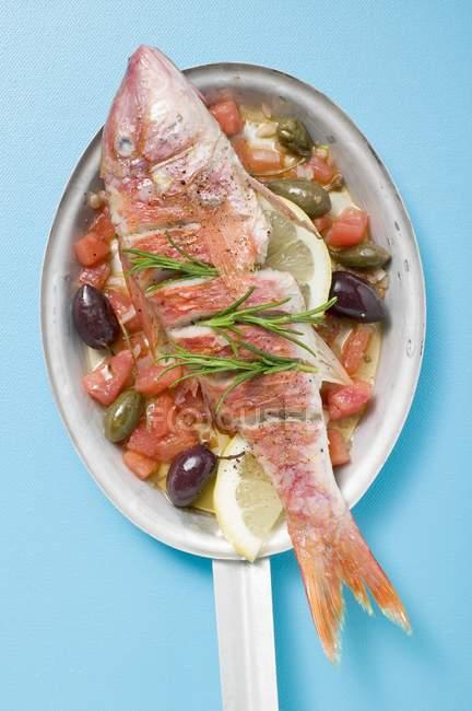 Gebratene Rotbarbe auf mediterranem Gemüse — Stockfoto