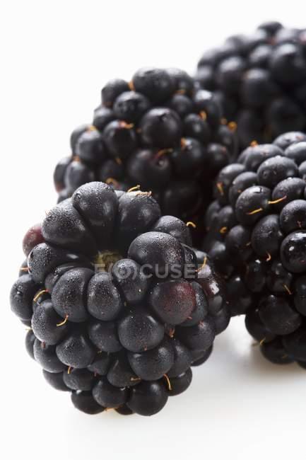 Fresh ripe blackberries — Stock Photo