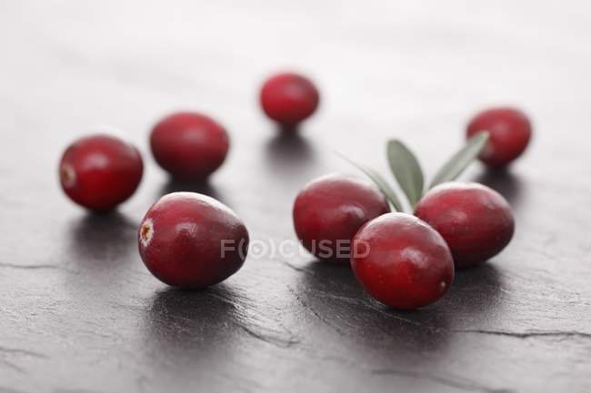 Fresh Cranberries with leaves — Stock Photo