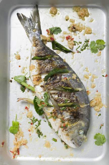 Roasted gilthead bream — Stock Photo
