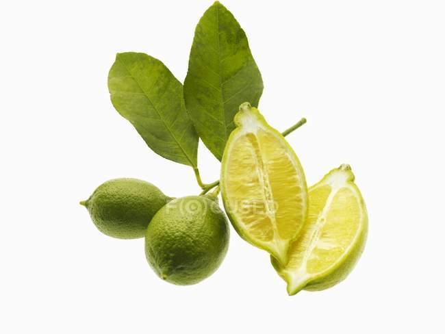 Halbierte Zitrone und Limetten mit Blättern — Stockfoto