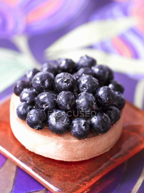 Blueberry tartlet on board — стоковое фото