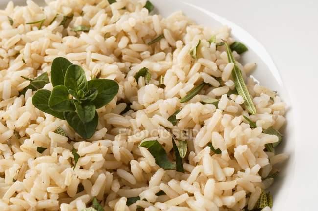 Reis mit Salbei gekochter Rosmarin — Stockfoto