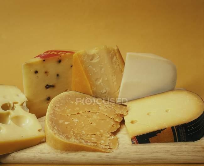Différents types de fromage hollandais — Photo de stock