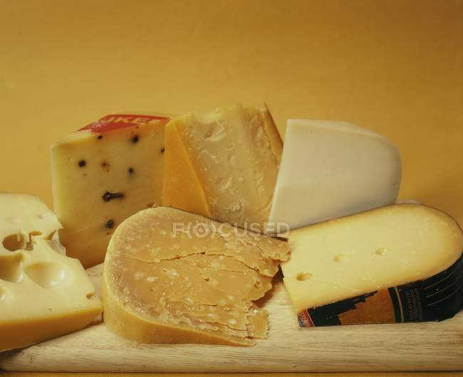 Varios tipos de queso holandés - foto de stock