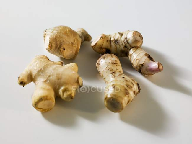 Ginger and galangal roots — Stock Photo