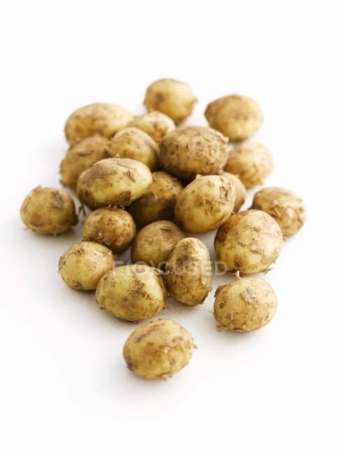 Haufen von gekochten Kartoffeln — Stockfoto
