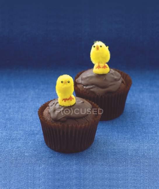 Cupcakes decorados con pollitos de Pascua - foto de stock