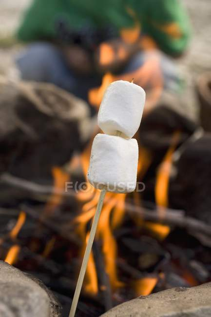 Зефир над огнем — стоковое фото